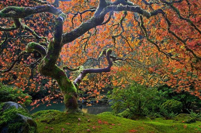 filckr photo contest benjamin edelstein landscape photo 4 640x0