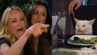 The cat meme combines Taylor Armstrong and Kylie Richards of the reality show The Real Housewives of Beverly Hills, with a picture of the cat Smudge_Lord