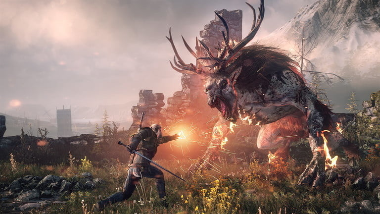 video game The Witcher