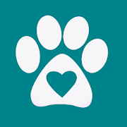 Chuby - adopt a dog, cat and more pets!