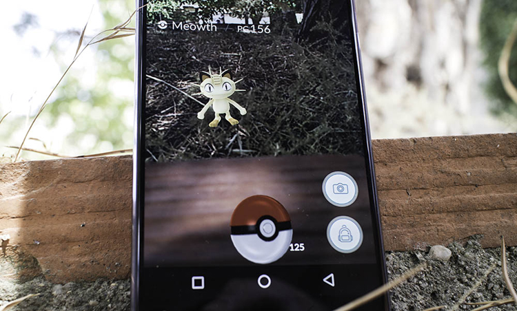 Capture a Pokémon in Pokémon Go