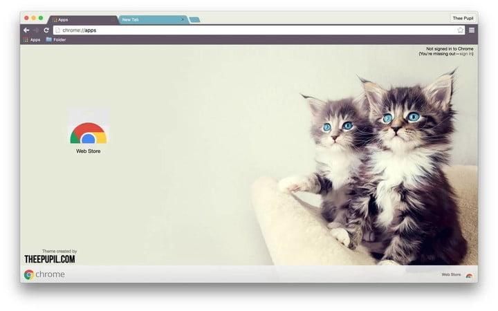 Kittens Google Chrome Themes